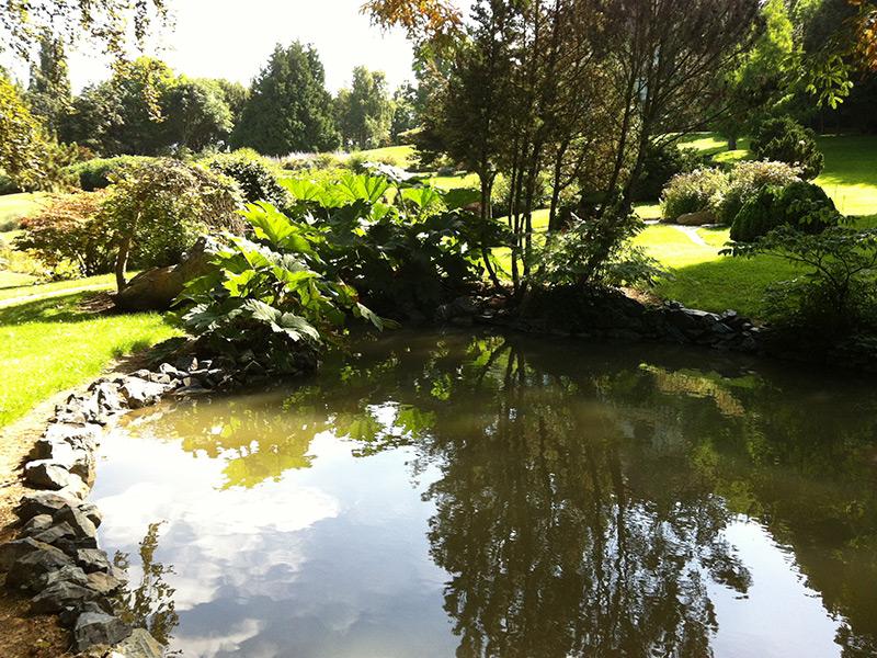 Bassin d 39 ornement eclairage de jardin dans le calvados for Eclairage bassin